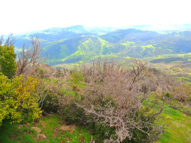 Mount Diablo 14