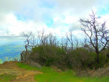 Mount Diablo 10