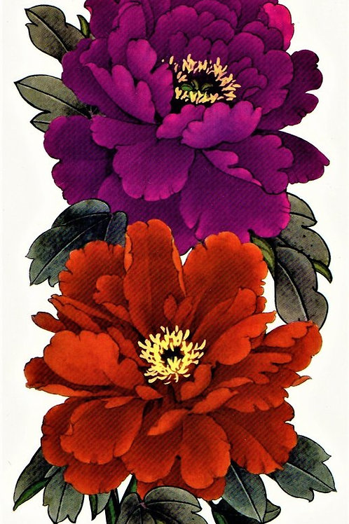 Blumen lila rot