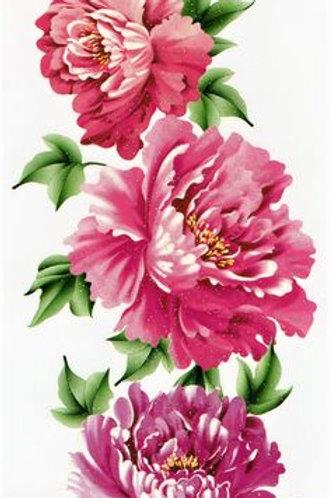 Blumen rose pink