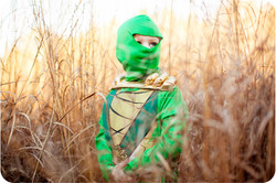 Green Ninja_09.jpg