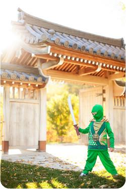 Green Ninja_06.jpg
