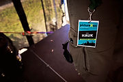 hauk live - picture on festival