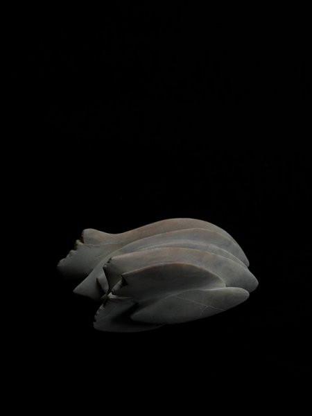 Kleiner Schwarm