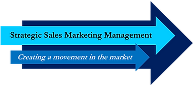Strategic Sales Marketing Management