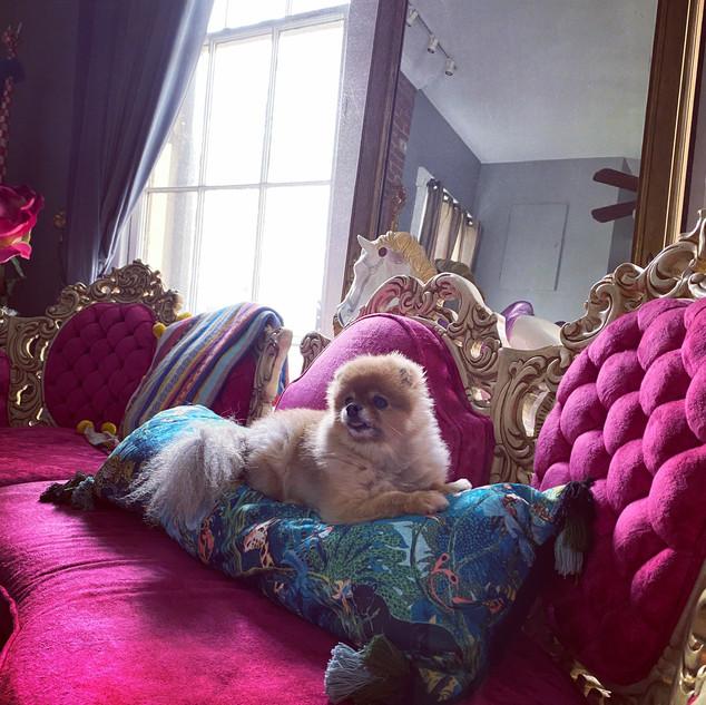 New Orleans Living Room