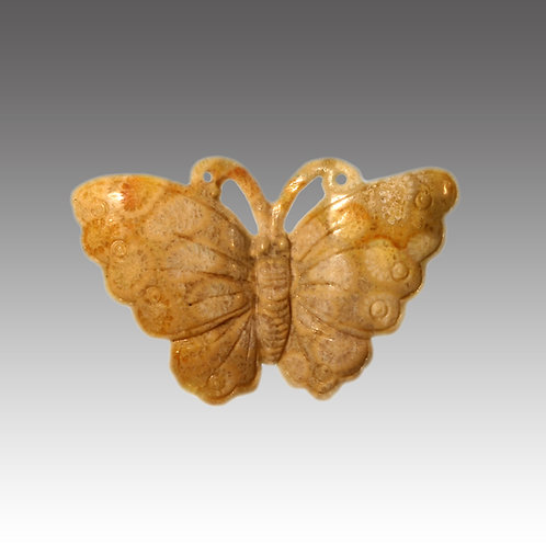 Fossil Coral Butterfly