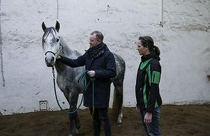 Pferdegestütztes Coaching Wunstorf