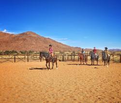 Horsemanshiptraining with the volunteers