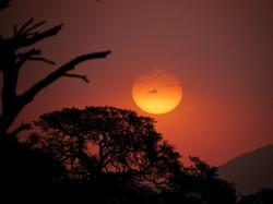 Sunset on Ranch Koiimasis
