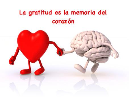 La gratitud es la memoria del corazón