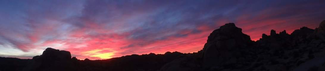 Joshua Tree Sunset Treats