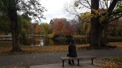 Robin Williams Memorial, Boston Park