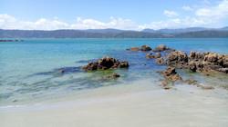 Scorching Bay, Miramar, New Zealand