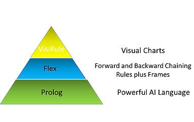 VisiRule & Flex Expert System Shell