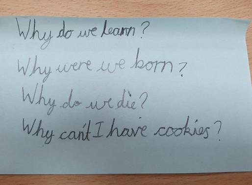 Lesson Focus: Big Questions