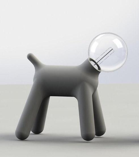 dog1_edited.jpg