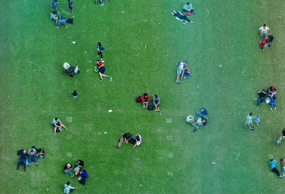 Aerial-Grass_edited_Filter_6 1 (1).jpg