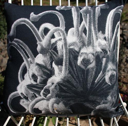Spider grevillea - Square 40 x 40cm Cushion