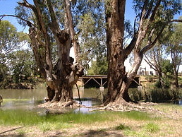 Accommodation caravan park camping Moulamein lake lakeside cabin site powered Moulamein hire rent rental moulameinlakesidecaravanpark trailer housing grassed bbq heater fire ozpig accessories wood heat fishing boating skiing kayak history