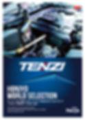 TENZI-4.jpg