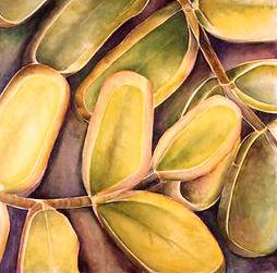 EukalyptusHevea_180x185cm%2Coiloncanvas2