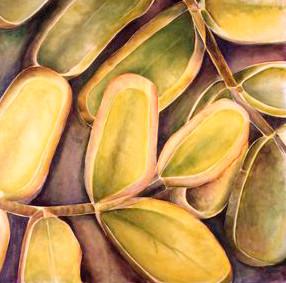 Eukalyptus Hevea, 180x185cm, oil on canvas