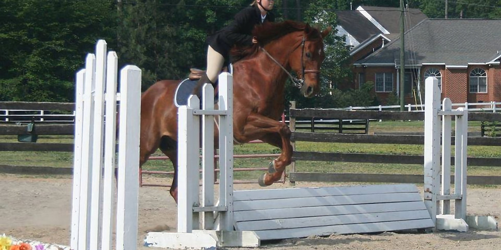 Fall Horse Show