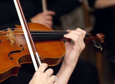 A Brief History of the Violin