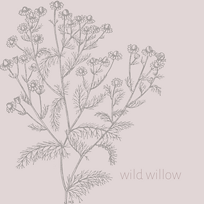 wild willow logo final.png