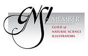 GNSI_Member_Badge_Black.jpeg