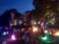 Tree Uplights 1.jpg