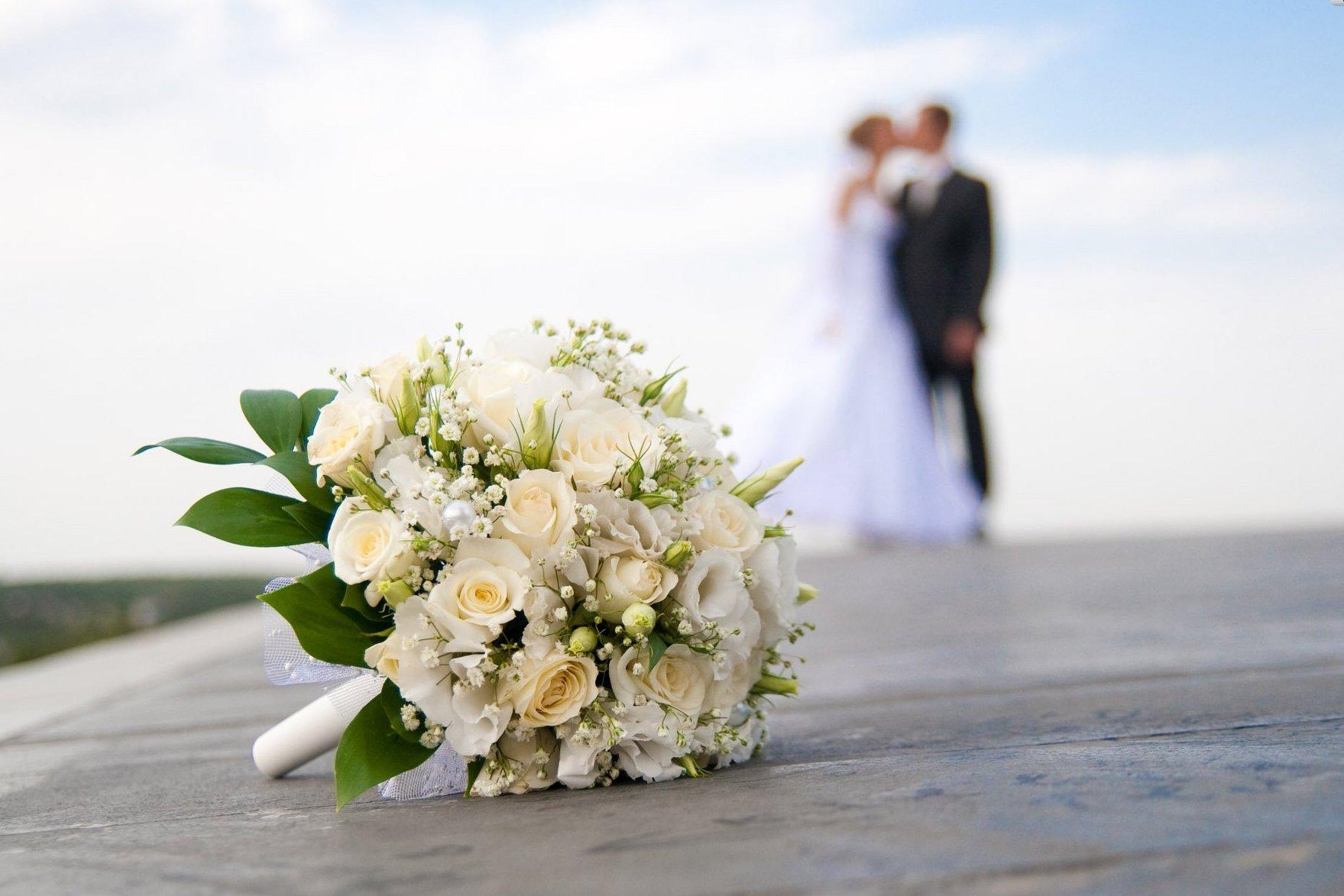 "photographe mariage saint brieuc"""