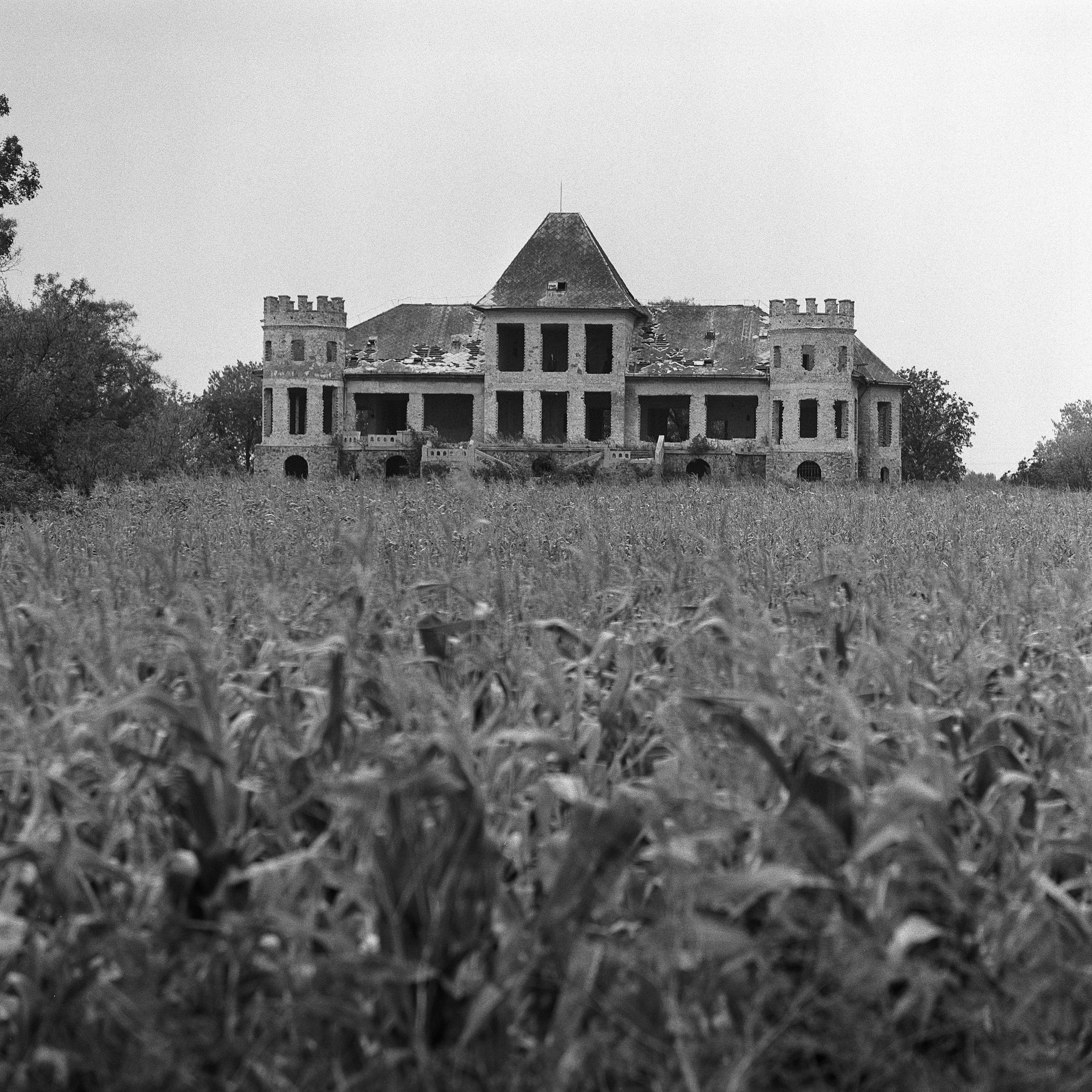 Kisfaludi kastély