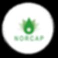 Logo NORCAP