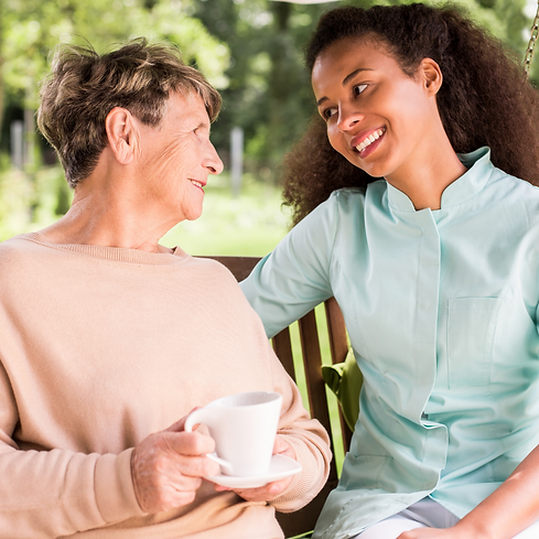 Care assistant having a chat to older woman