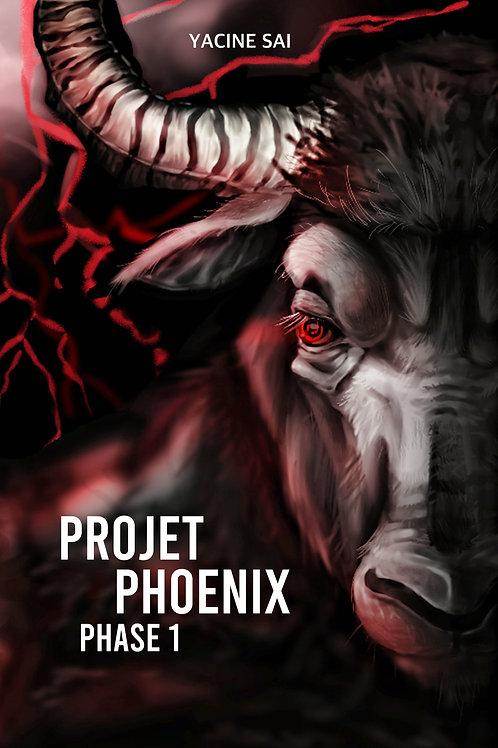 Projet Phoenix - Phase 1