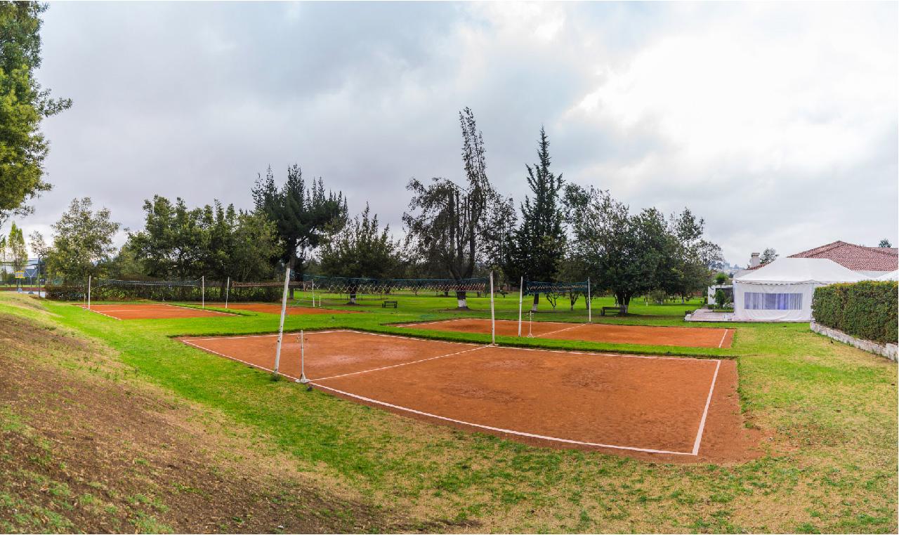 volley  club la campina