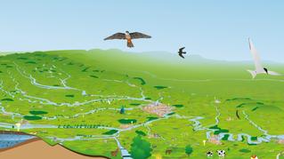 Fleuves Grandeur Nature : un outil pédagogique novateur