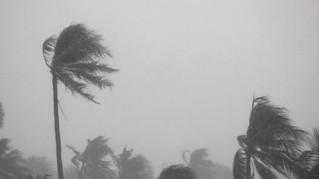 Solidarité avec les Antilles