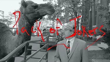 POJ camel 2.png