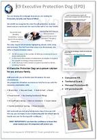 EPD flyer image.png