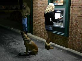 woman cashmachine dog.png