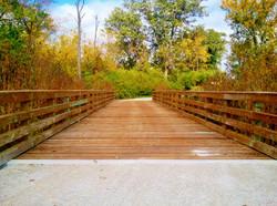Bridge near Prairie Grove Road