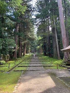 fukui shrine.JPG
