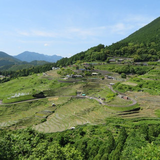 SPIRITING AROUND KUMANO MOUNTAINS~Two Days in Kumano:Second day~