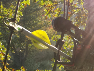 10 Things New or Old Bowhunters Should Know/Do