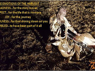 THE EMOTIONS OF THE HARVEST