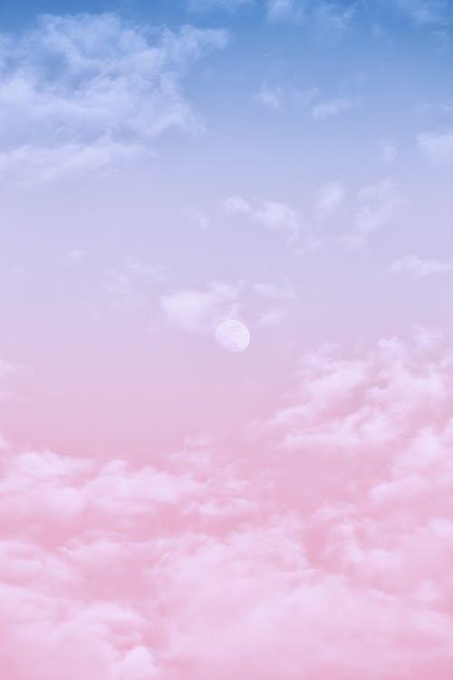Background 2.jpeg