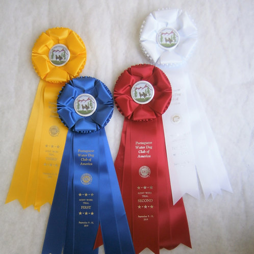 Scent Work  (Handler Discrimination): Rosettes